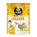 小阿哥益生元核苷酸贡米营养米粉