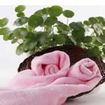AngelDream安歌吉姆70%竹纤维小毛巾粉色AGZD2A-P