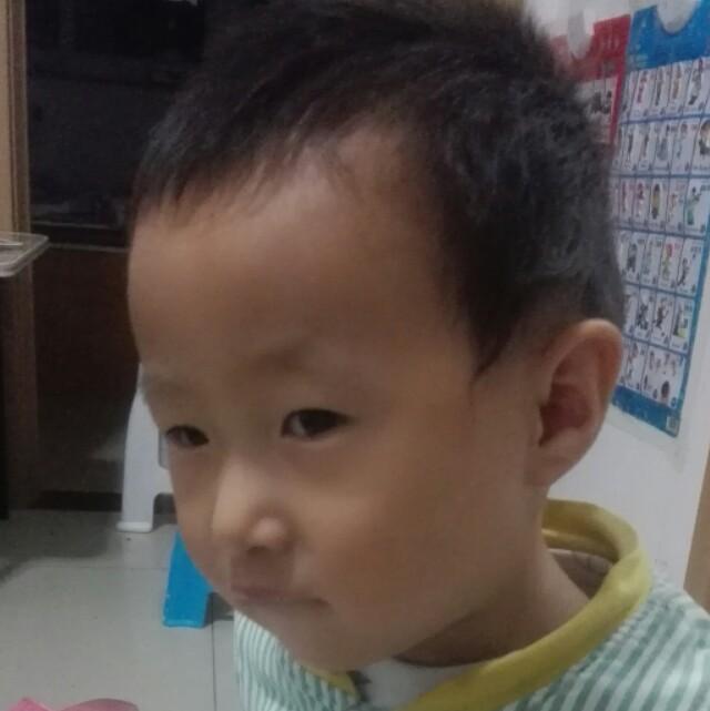 zhangy3683